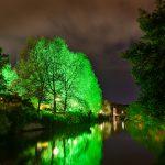Green iluminated tree at a river at night