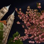 Blossoms with the towers of St. Sebald in the background at night