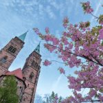 Blossoms with the towers of St. Sebald in the background